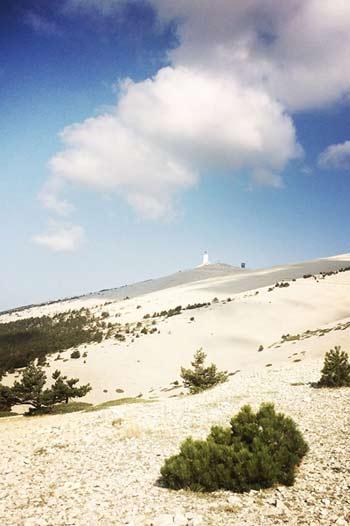 Randonnée Mont Ventoux au coeur de la nature