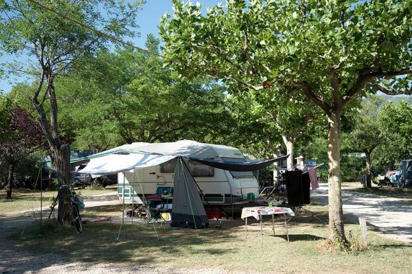 Emplacement caravane sous les arbres