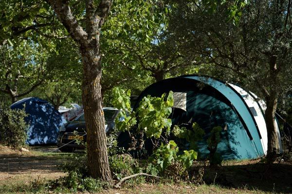 Emplacement camping sous les arbres